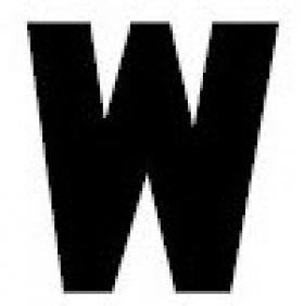 Gemini Flat Acrylic Letter - W